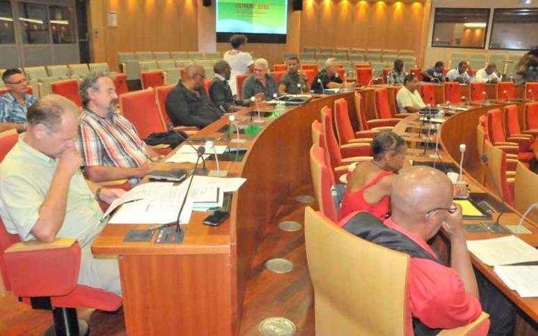 DOSSIER – Les préconisations du Ceser Guyane en matière d'aménagement du territoire