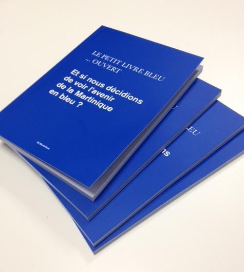 L'actualité de contact entreprise Martinique : Le Livre Bleu