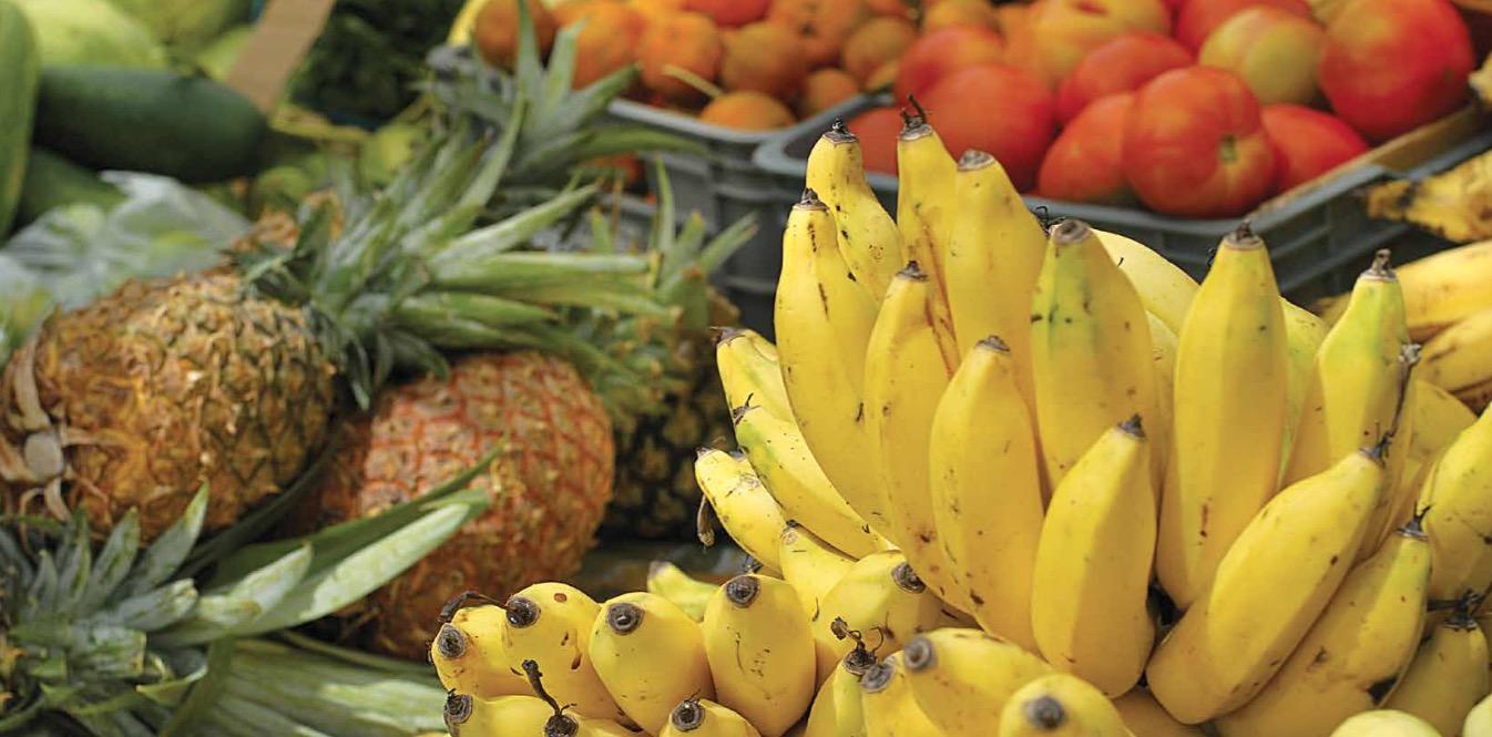 DOSSIER BIO : Consommer sain et bio, un défi ?