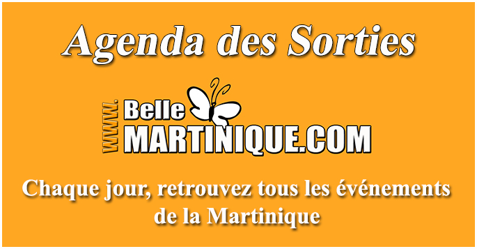 Les bons plans de bellemartinique.com