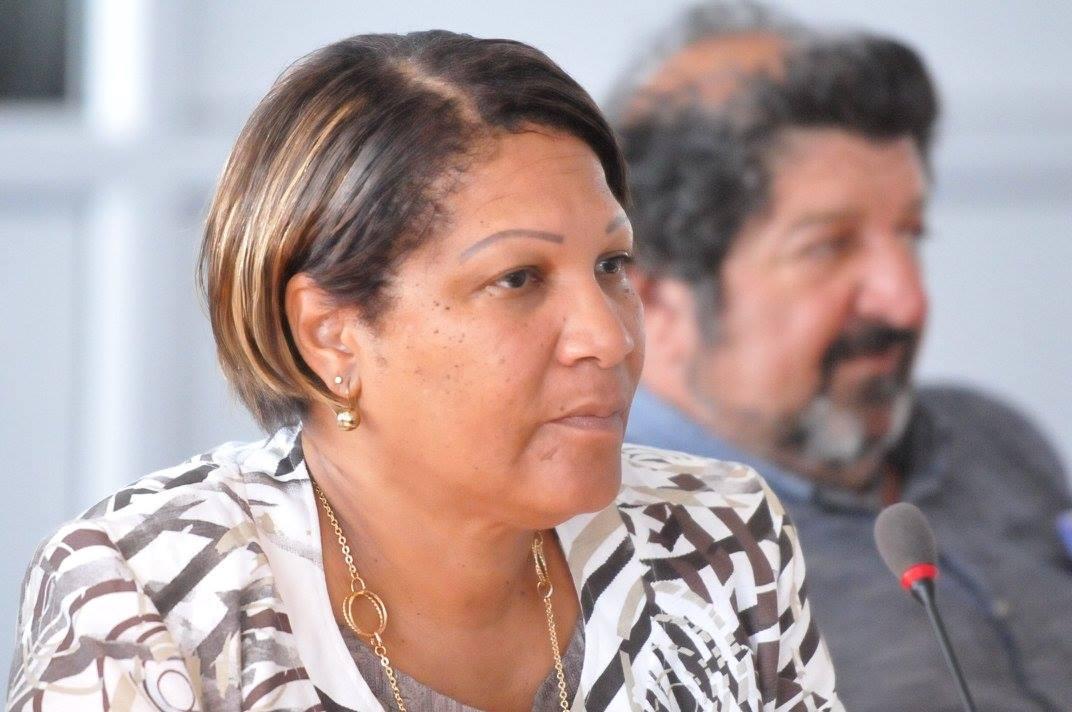 Le Ceser Guyane : l'esprit d'une instance consultative performante