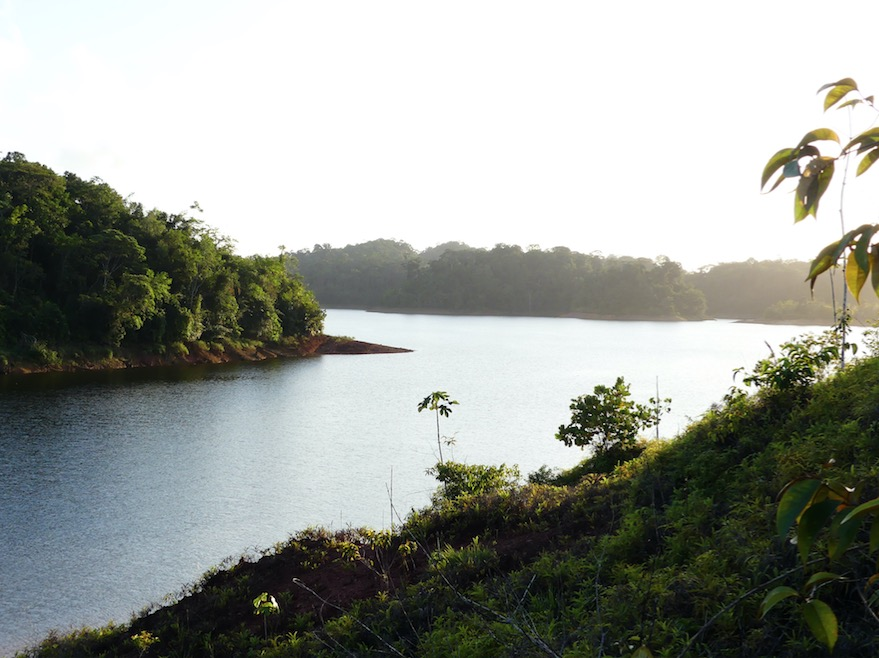 DOSSIER Immobilier : l'Office de l'Eau de Guyane, les enjeux de l'eau