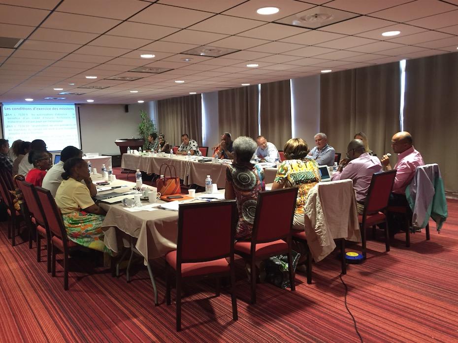 Journée d'information et de formation des conseillers du Ceser Guyane