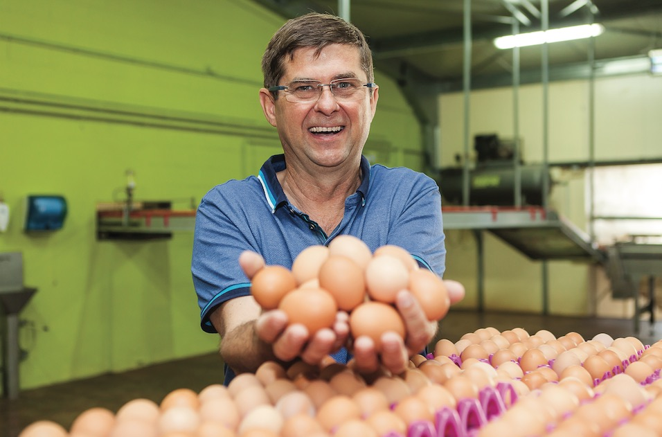 Ovocoop, retour sur 20 ans d'œufs frais