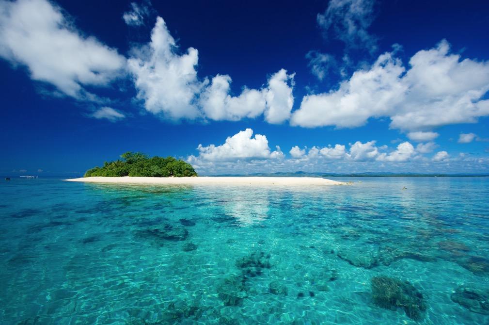 Contact-Entreprises : et si la Martinique devenait une réserve de biosphère ?