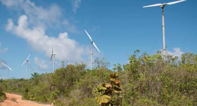 L'Obligation Verte : la France soutient les projets environnementaux