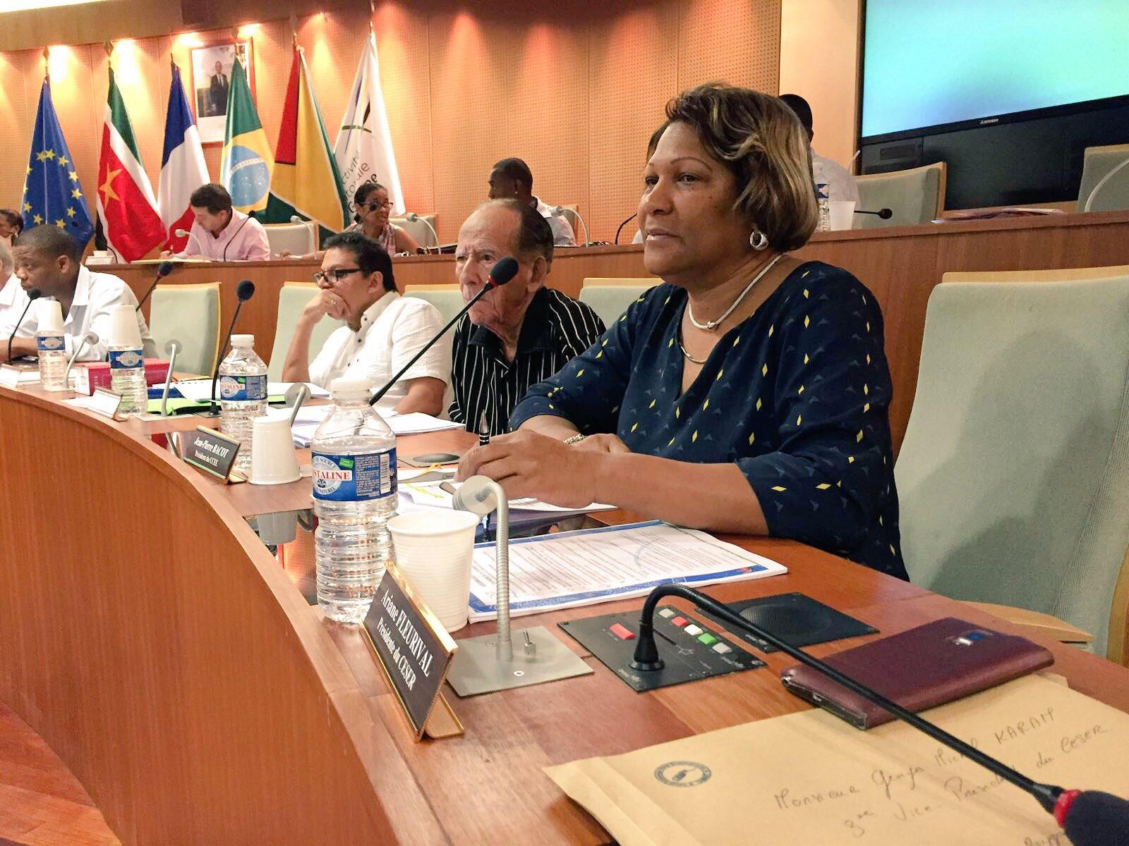 Ceser Guyane : le Small Business Act au service des TPE/PME guyanaises