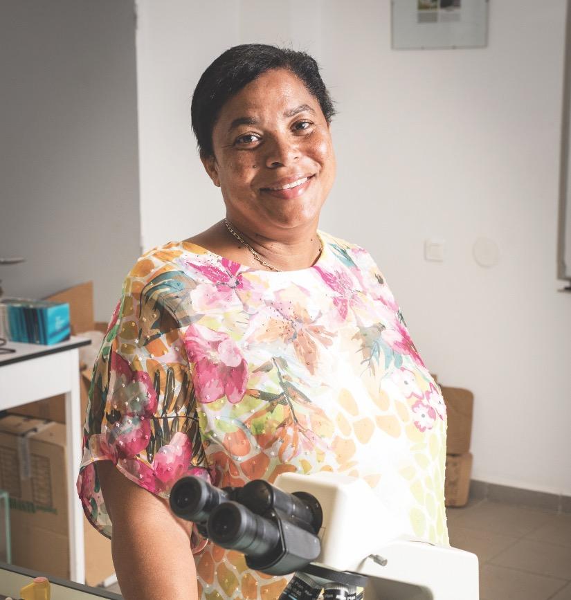 Région Guadeloupe : gestion des déchets, le dossier phare