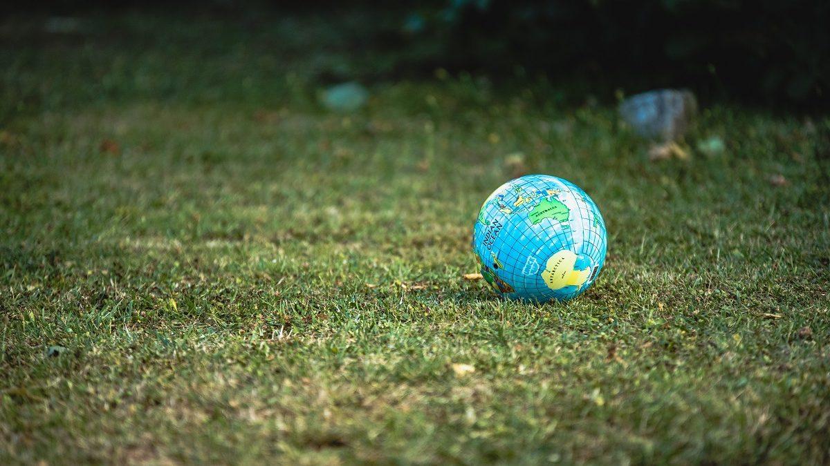 Les entreprises mécènes de NQT s'engagent pour l'écologie