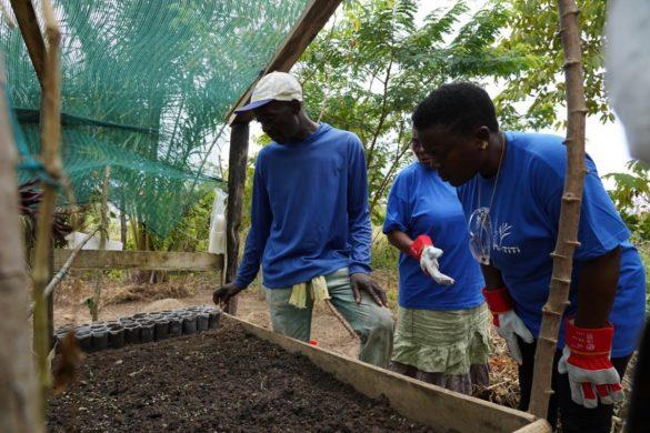 Agriculteurs de petites exploitations traditionnelles en Guyane