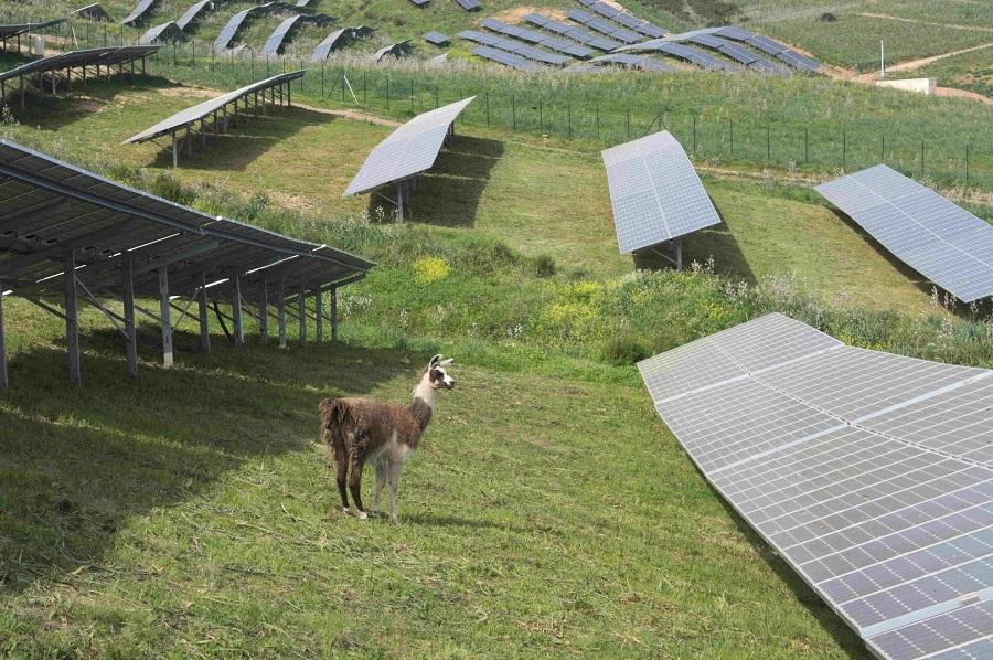 Installation de panneaux solaires à Alata par Corsica Sole