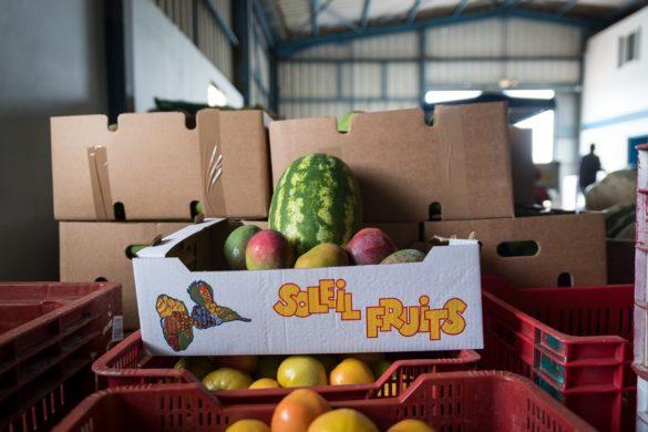 Fruits guadeloupéens labellisés Produits d'ici par Carrefour Guadeloupe
