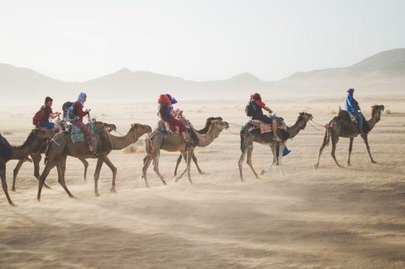 Voyage organisé par une agence de voyages - photo via Unsplash