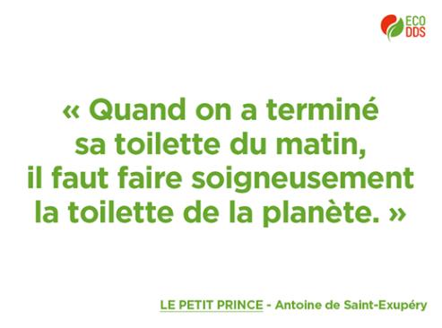 Citation sur l'environnement tirée du Petit Prince