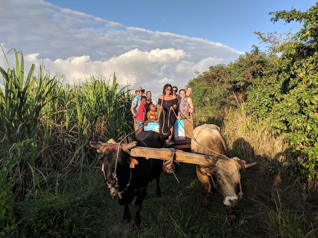Touristes québécois en Guadeloupe dans le cadre du projet Carlnada