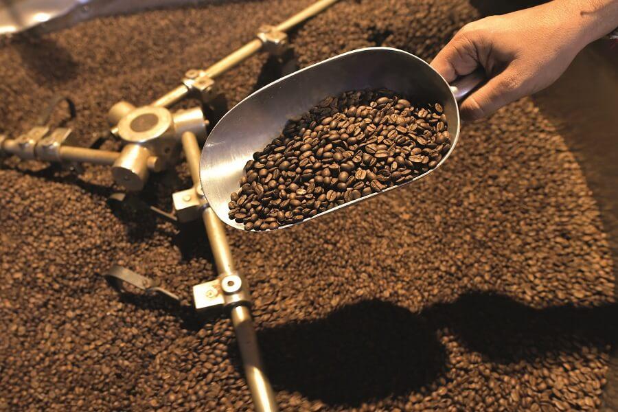 Grains de café grillés - Café Chaulet - Guadeloupe