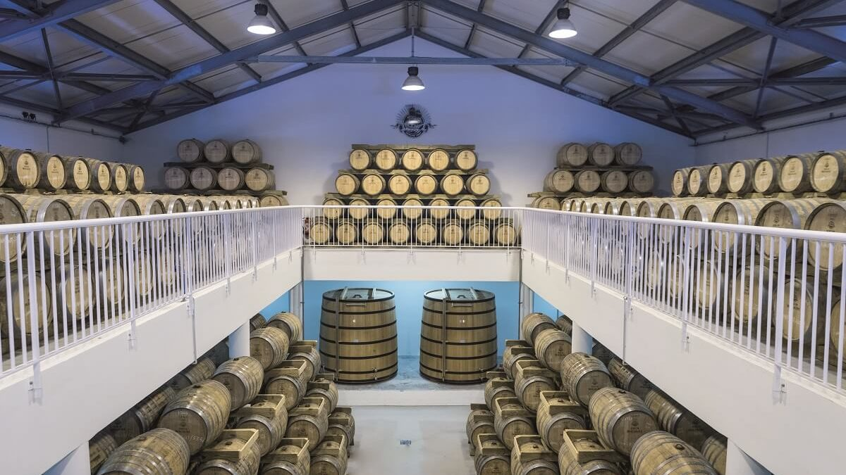 Distillerie Bologne : modernisation, écoresponsabilité, production bio