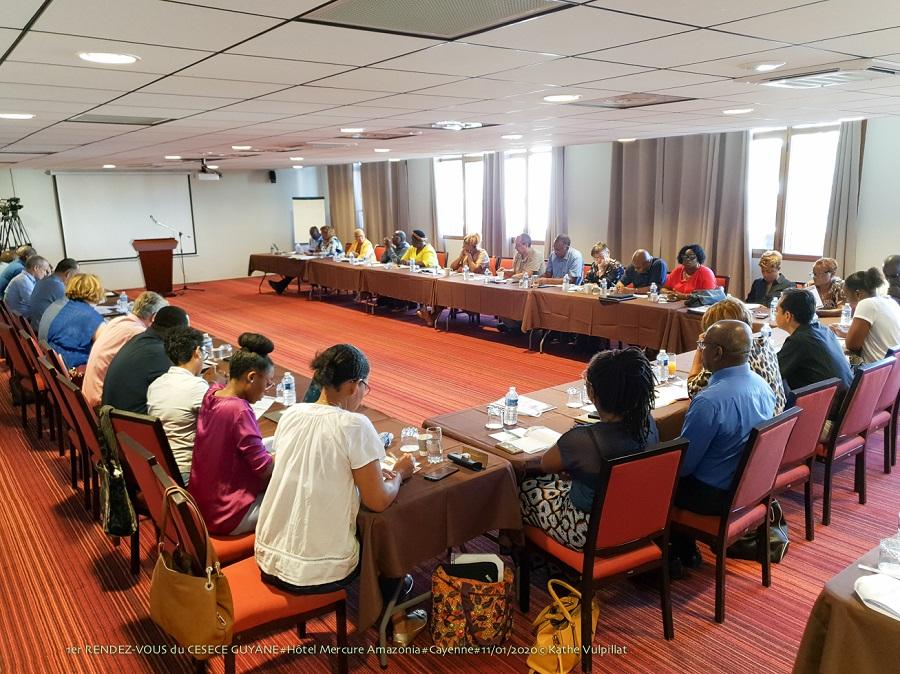 CESECE Guyane, vers « une démocratie directe  institutionnalisée »