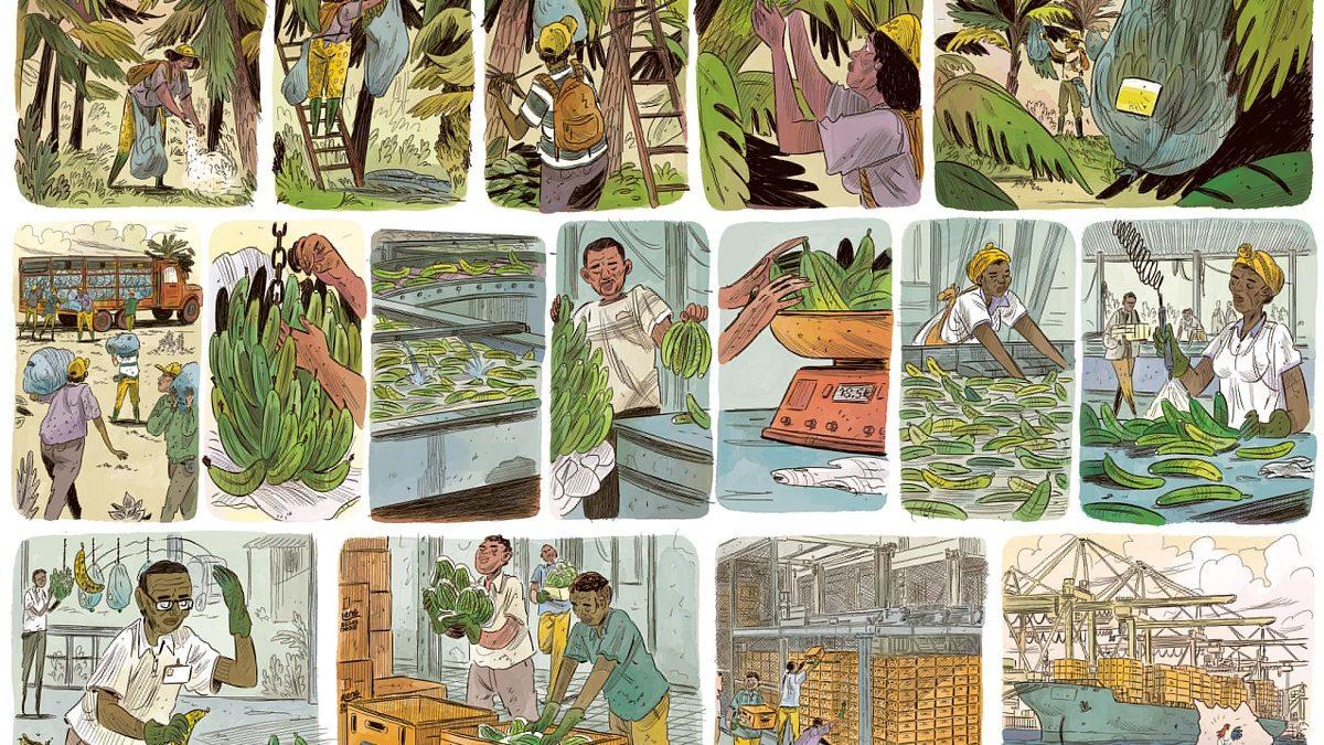 Tropiques Toxiques, une BD pour  sensibiliser à la pollution au chlordécone