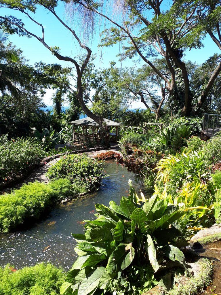 Jardin botanique Deshaies - Guadeloupe
