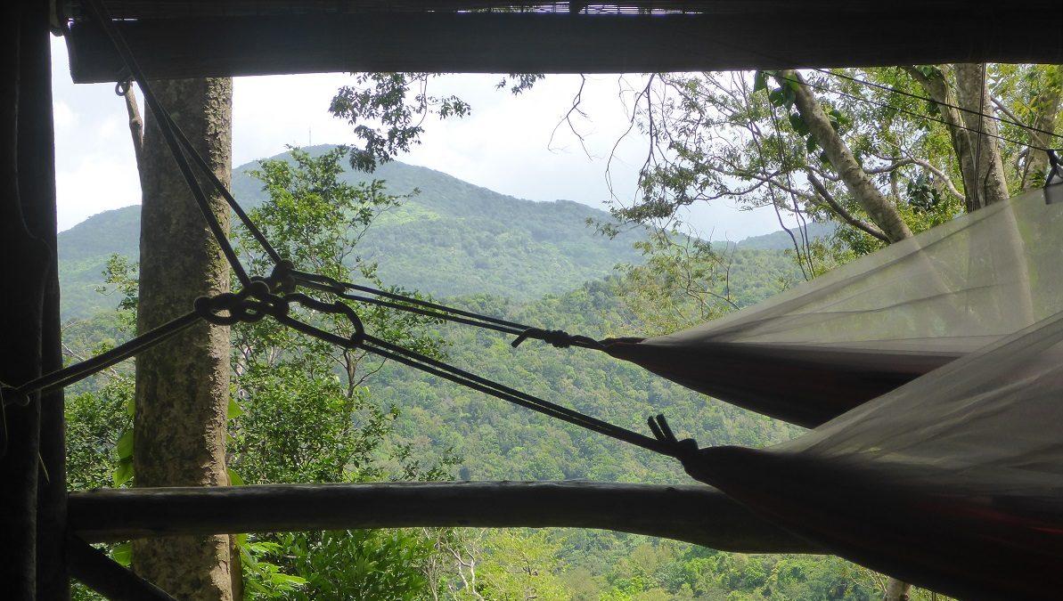 Tourisme durable: l'avenir des                 Antilles françaises ?