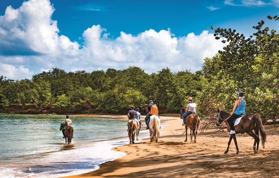 Ranch des 2 ilets - Balade à cheval - Guadeloupe