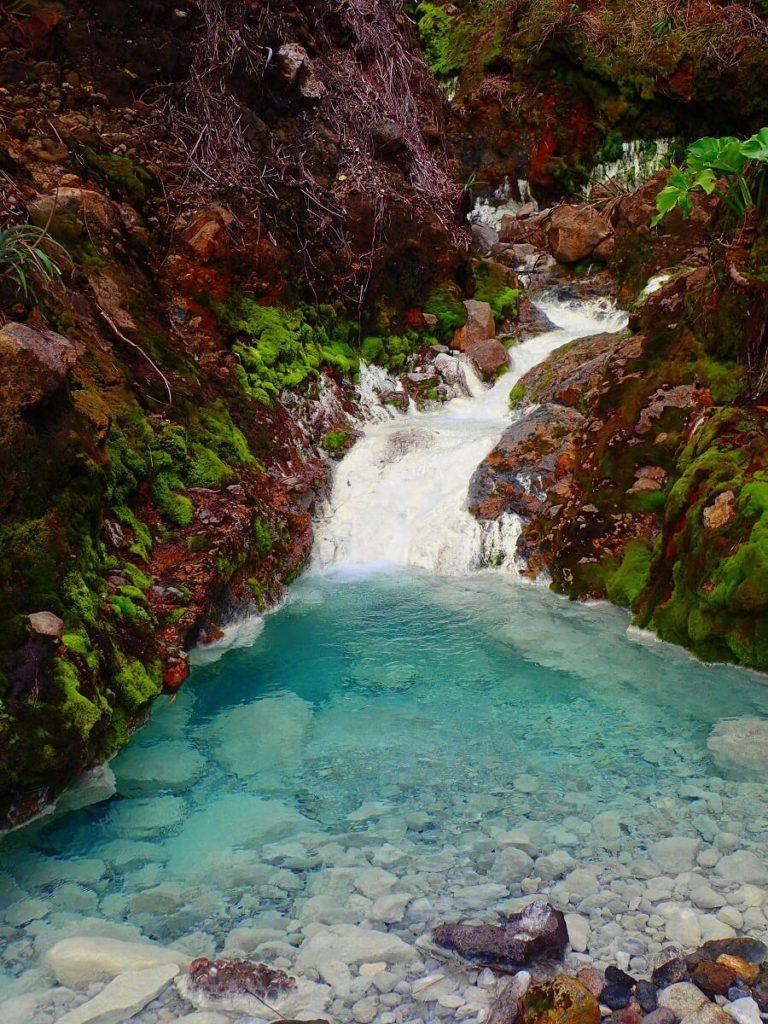 Rivière - Sud Basse Terre - Guadeloupe