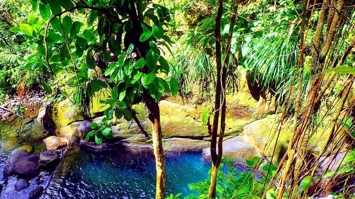 Les Bons Plans #Aventure en Guadeloupe