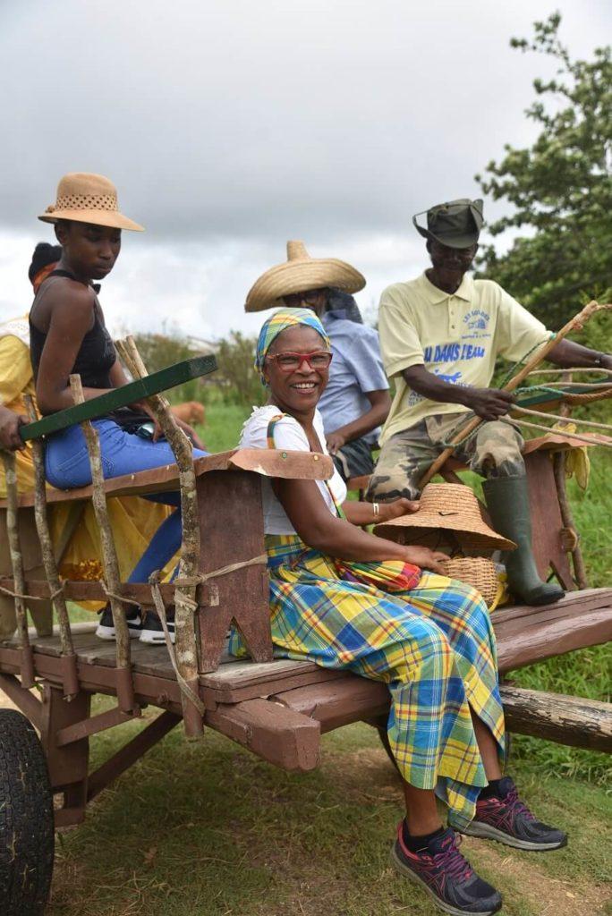 Visite charrette à boeufs - Guadeloupe