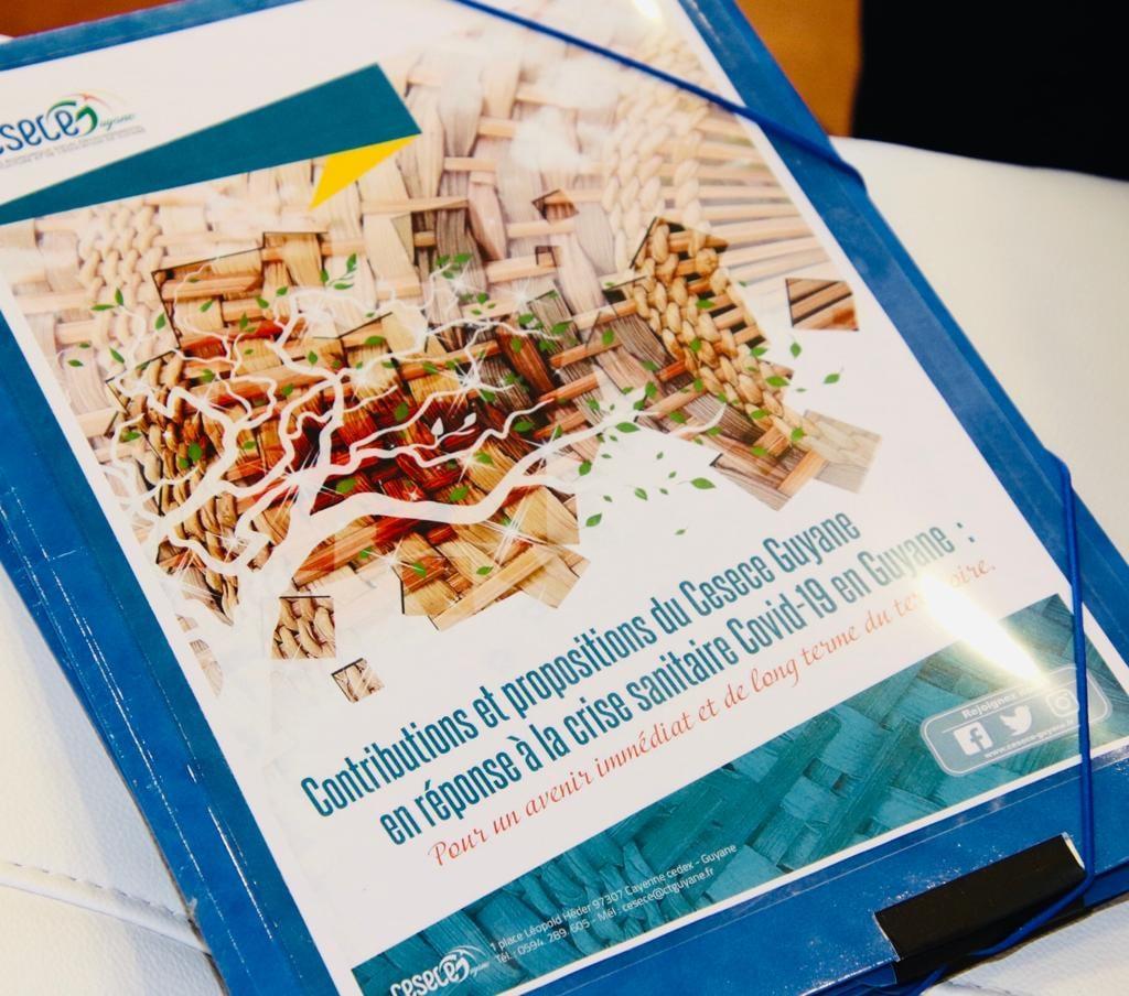 """""""Contributions et propositions du Cesece Guyane en réponse à la crise sanitaire covid-19 en Guyane"""""""