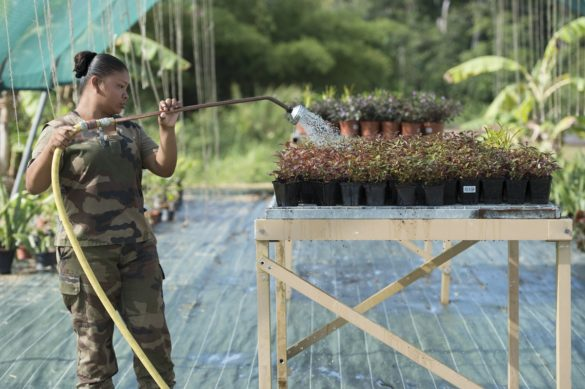 Formation jeunes amérindiens - RSMA Guyane