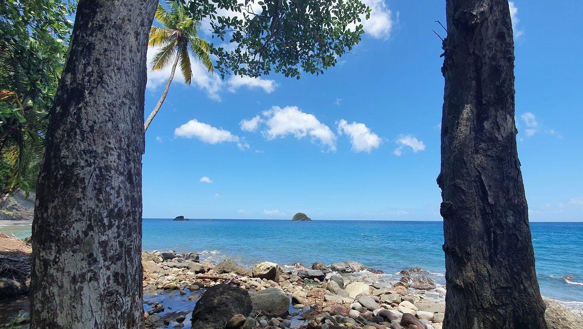 La CTM, des aspirations et un plan pour la Martinique de 2030