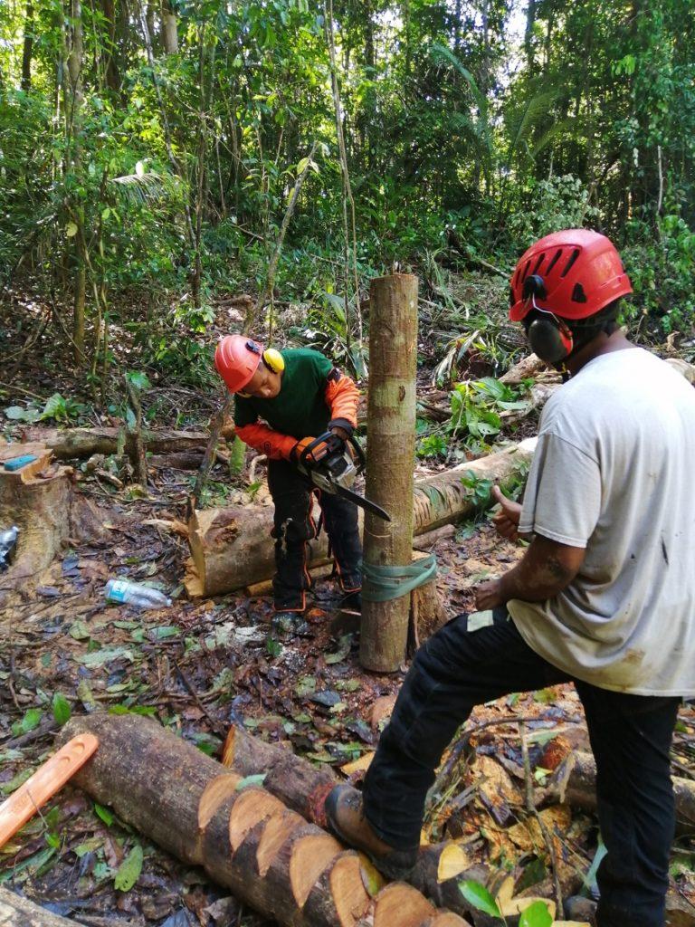 Formation ouvrier du paysage - RSMA Guyane