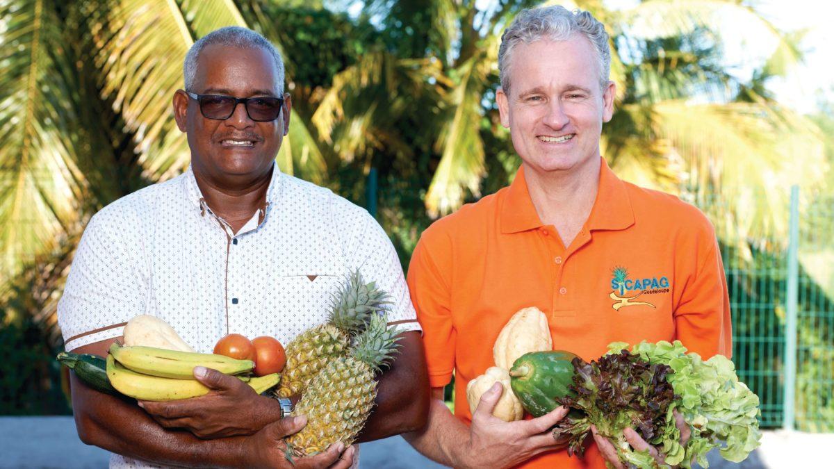 Peut-on rendre le bio accessible à tous en Guadeloupe ?