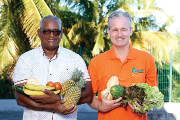 Alex Bandou et Emmanuel Colette - Sicapag - production bio Guadeloupe