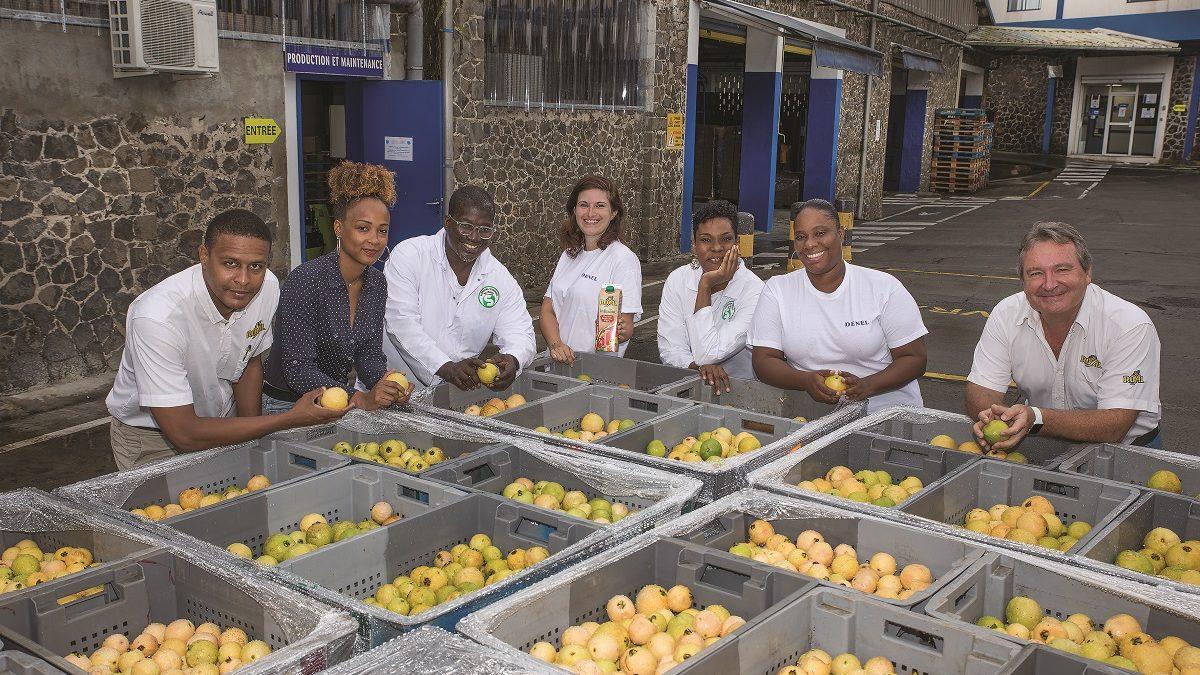 Denel ou l'expérience de création de filières de fruits, locales et vertueuses