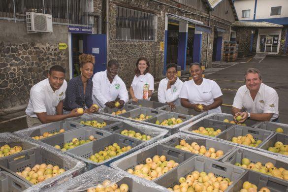 Equipe - Usine Denel - Martinique