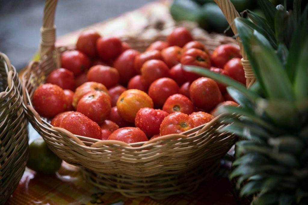 Production locale de tomates