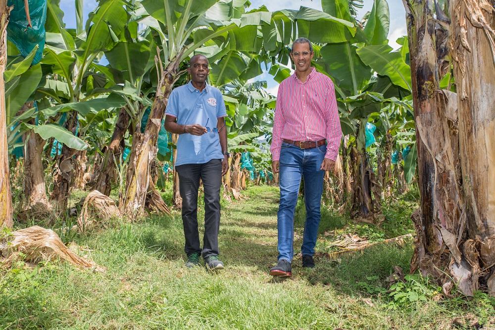 Place à l'indemnisation des victimes professionnelles des pesticides