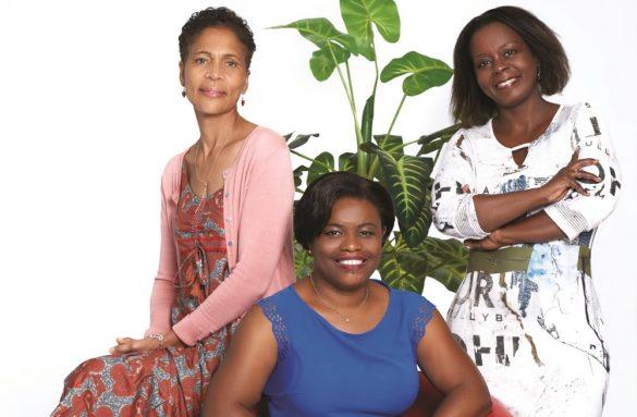 Ordre des Experts Comptables de la Guadeloupe
