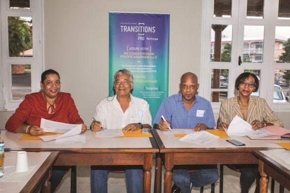 Transitions Pro Martinique