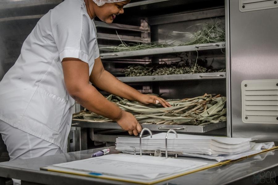 Recherche & Développement agroalimentaire - PARM - Martinique