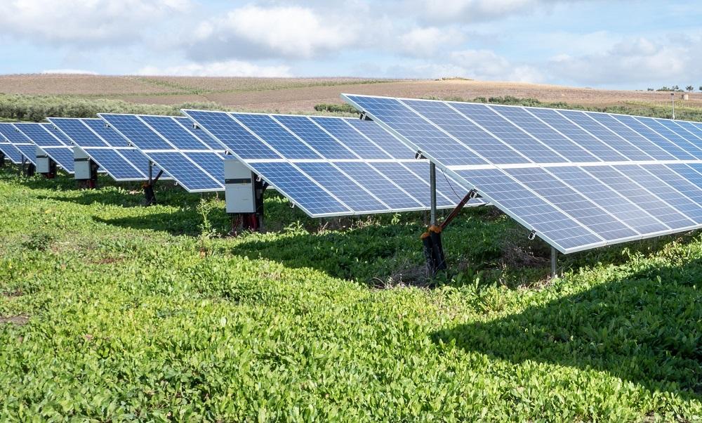 Energie verte & approvisionnement garanti : le défi d'EDF en Guadeloupe