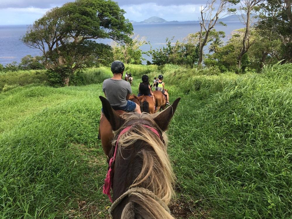 Randonnée Ecuries de la Coulisse - Guadeloupe