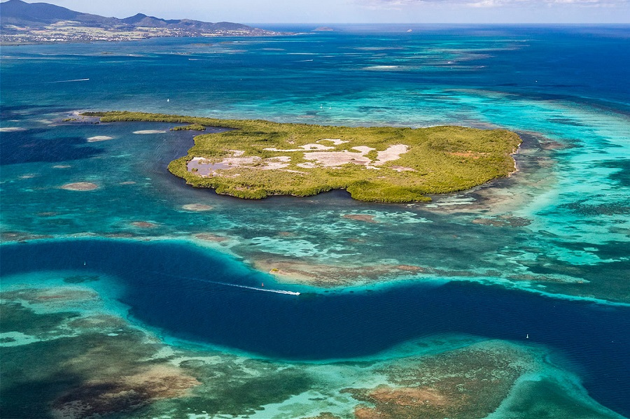 Grand cul-de-sac marin - Guadeloupe