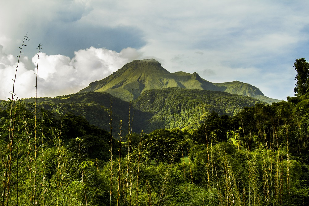 Le Nord de la Martinique, nouvel eldorado ?