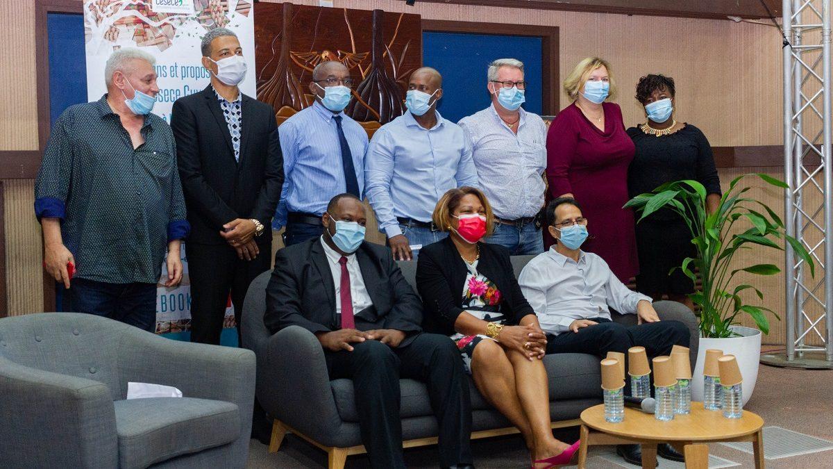 Santé, sanitaire, social : les préconisations du Cesece Guyane pour limiter la fracture territoriale