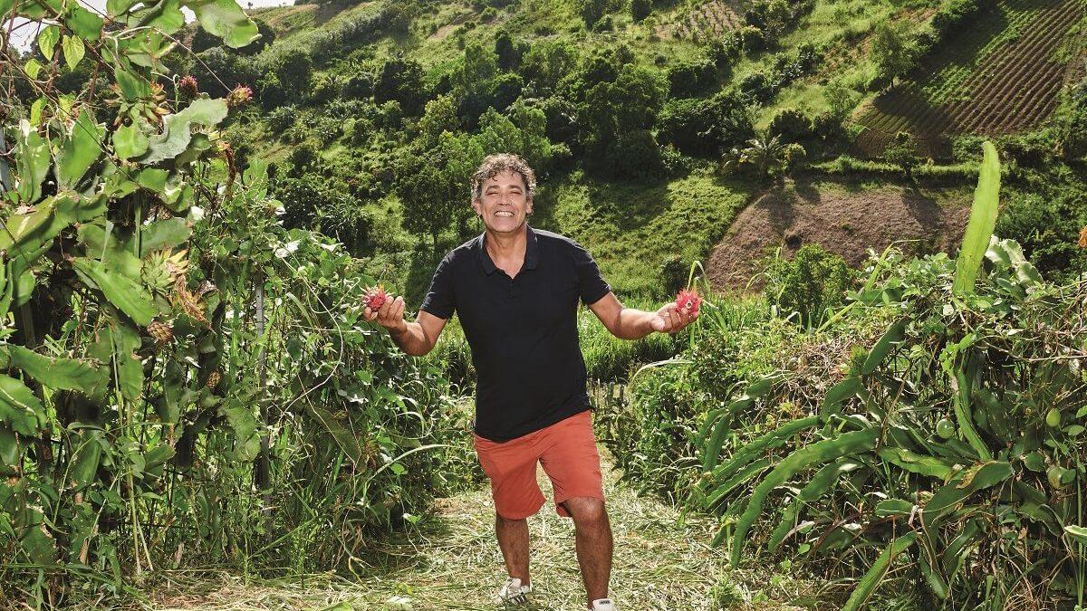 Le pitaya, une culture rentable en plein boom en Guadeloupe